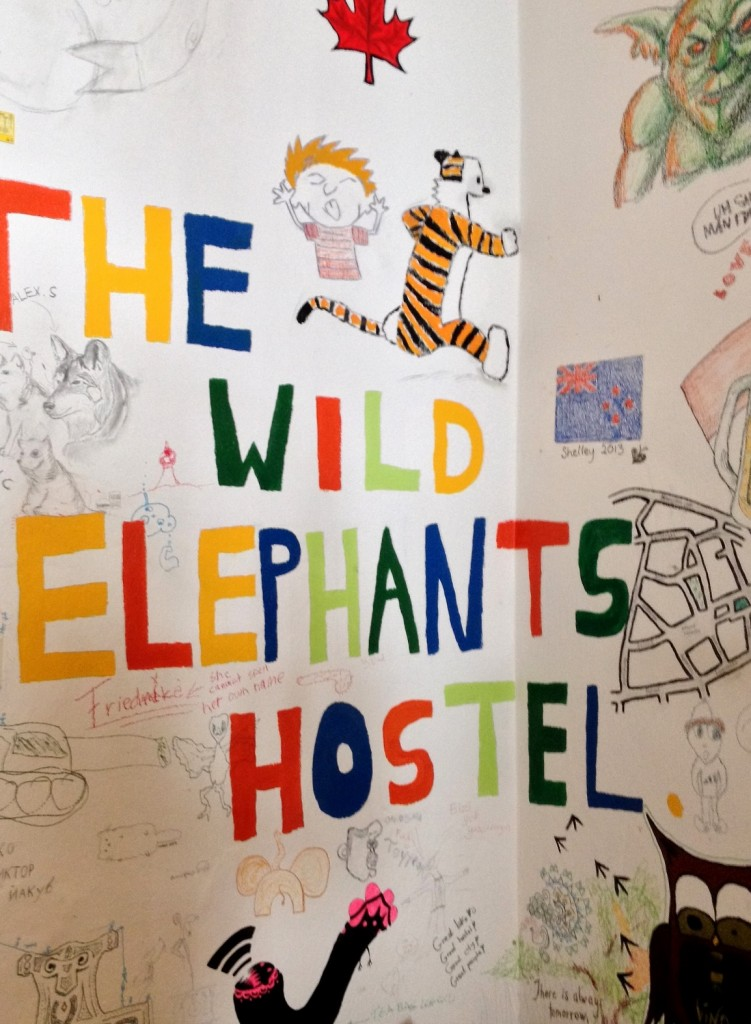 The wild elephants hostel Bratislava