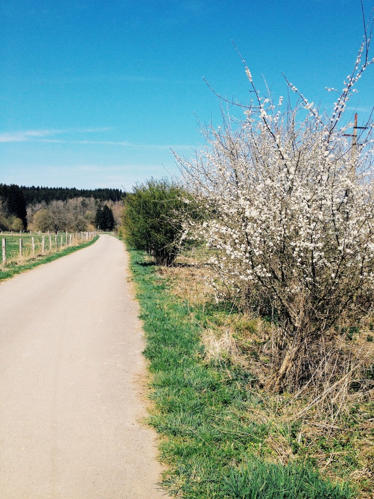 le printemps en province du Luxembourg