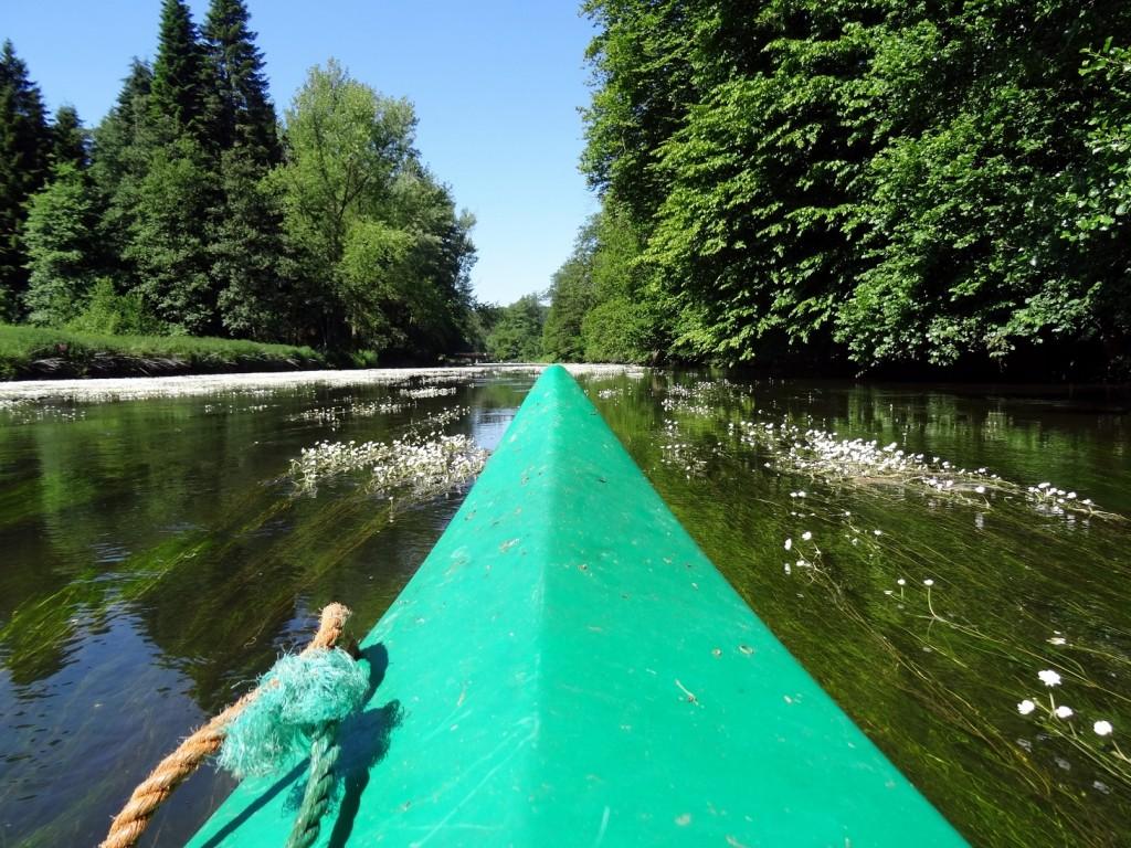 Descente de la Semois en canoë kayak - Province du Luxembourg
