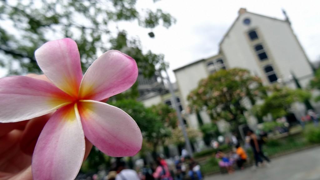 La Colombie joyeuse et colorée de Medellín et Guatapé