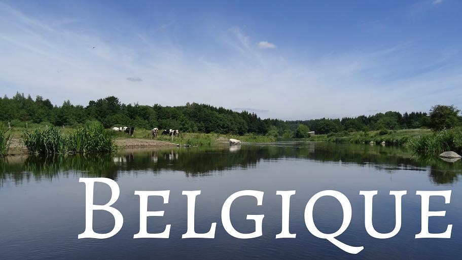 Catégorie Belgique
