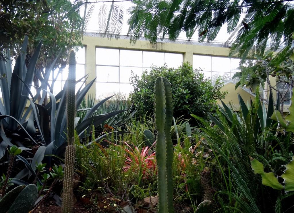 Jardin Botanique Bogota - Colombie - Cookie et Attila 15