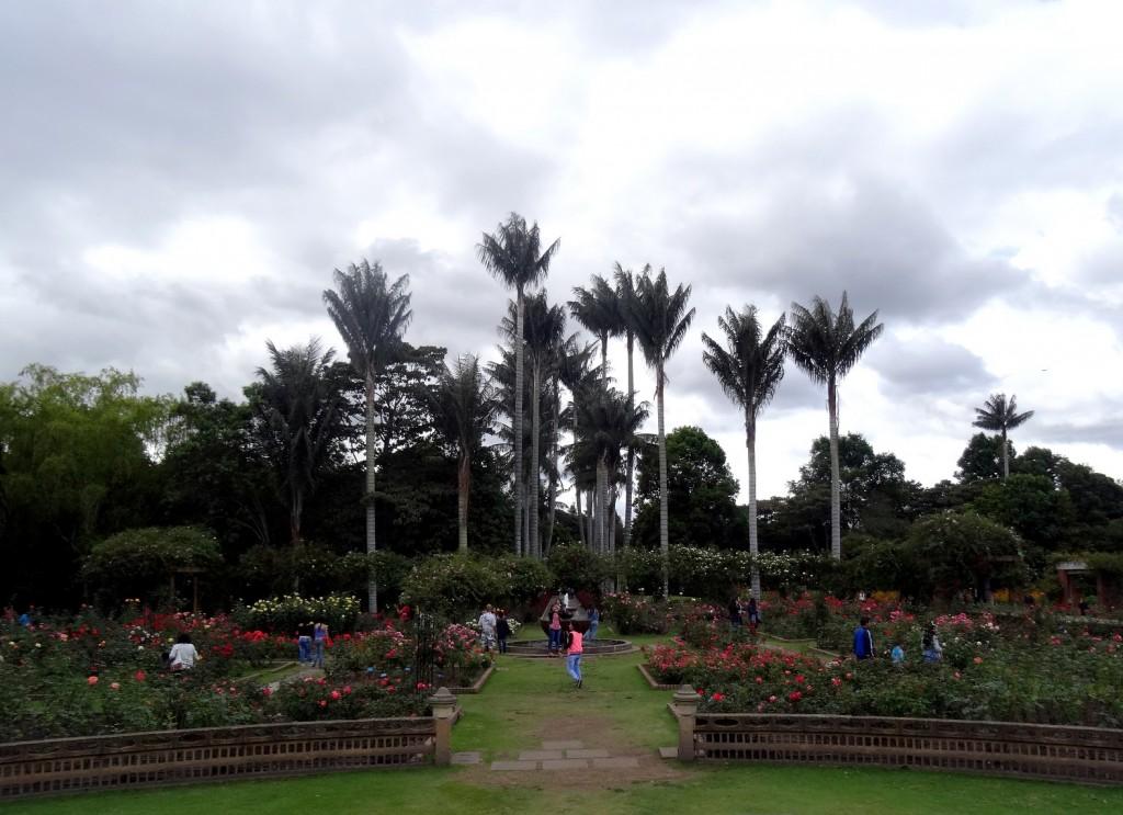 Jardin Botanique Bogota - Colombie - Cookie et Attila 18