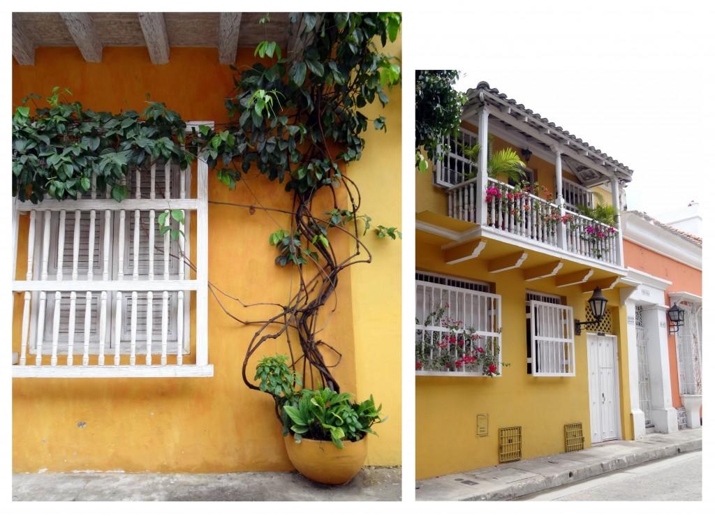Façades et plantes des maisons à Carthagène des Indes