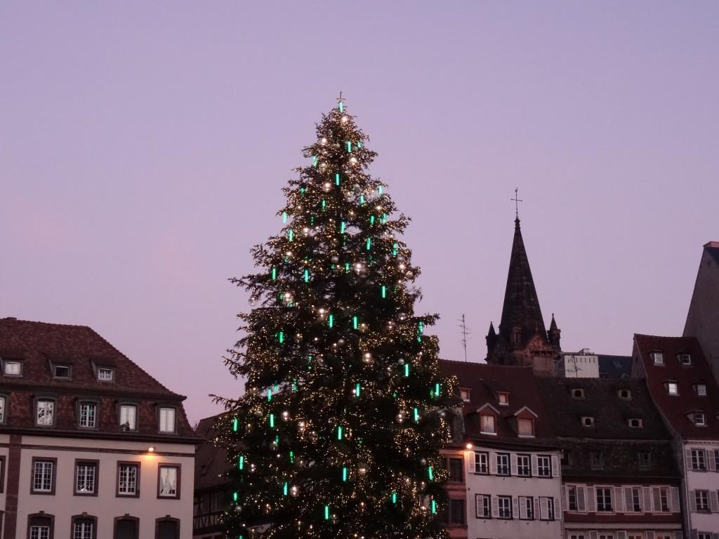 Oh grand sapin de Noël roi des forêts et de Strasbourg