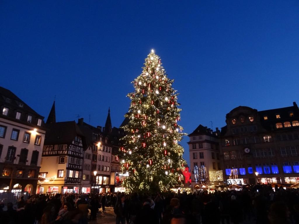 Sapin de Noël de nuit, à la place Kléber à Strasbourg