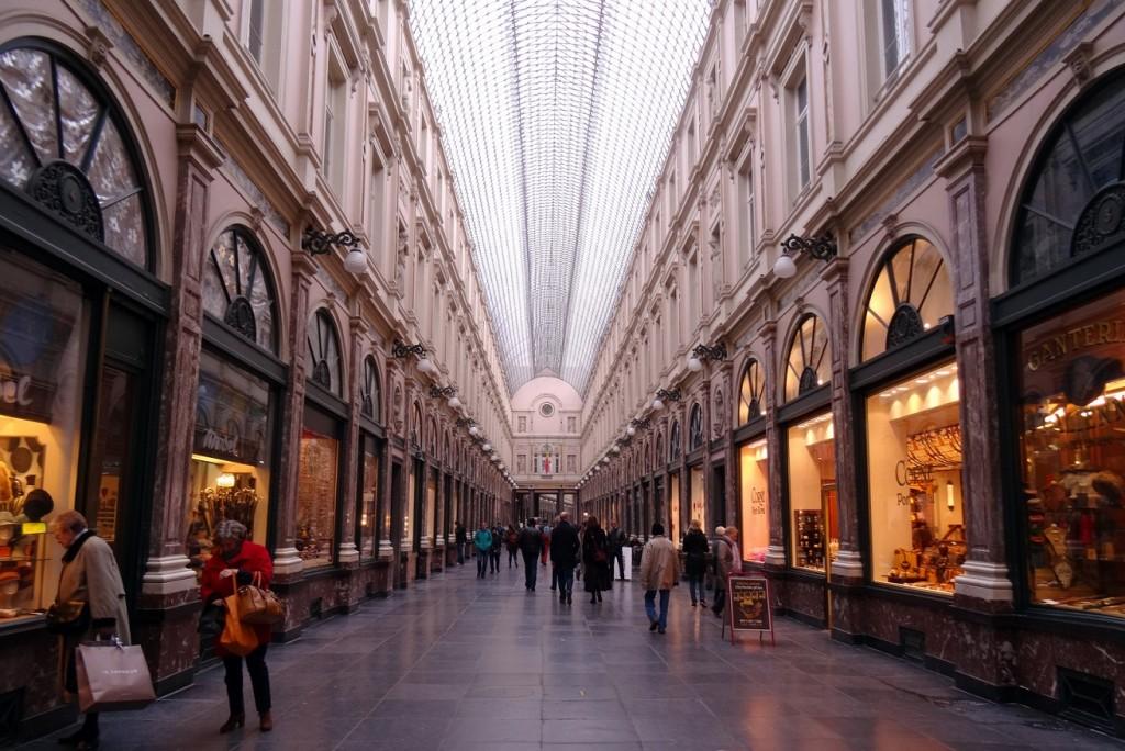 Bruxelles froide mais belle - Cookie et Attila 11