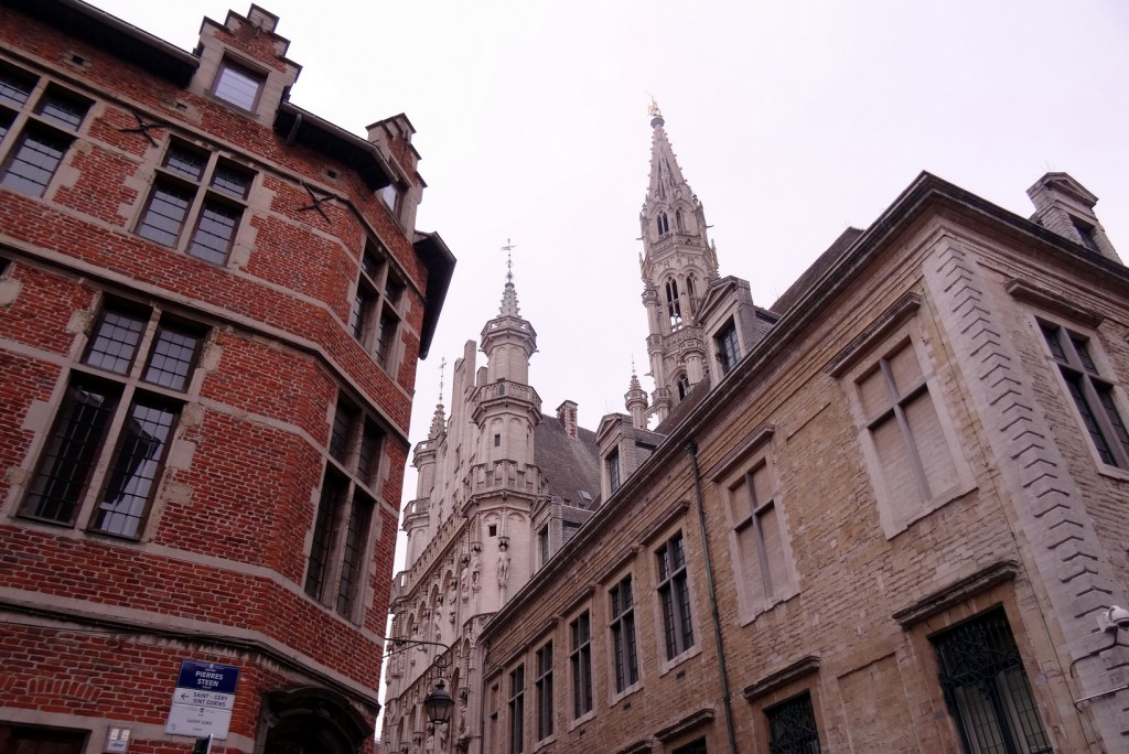 Bruxelles froide mais belle - Cookie et Attila 3