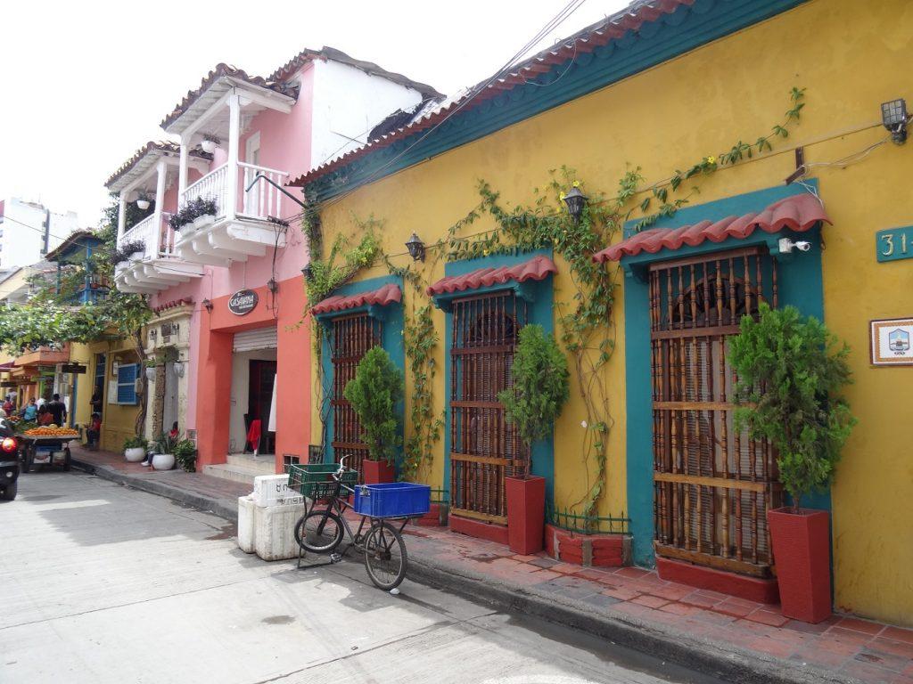 photo-voyage-colombie-cookie-et-attila-45