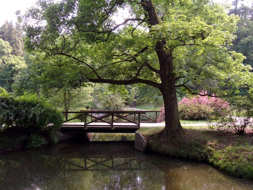 Pont et étendue d'eau au parc de Pruhonice