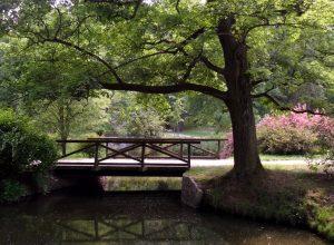Joli pont à Pruhonice et son parc