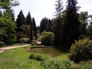 Petit étang à Pruhonice en République Tchèque