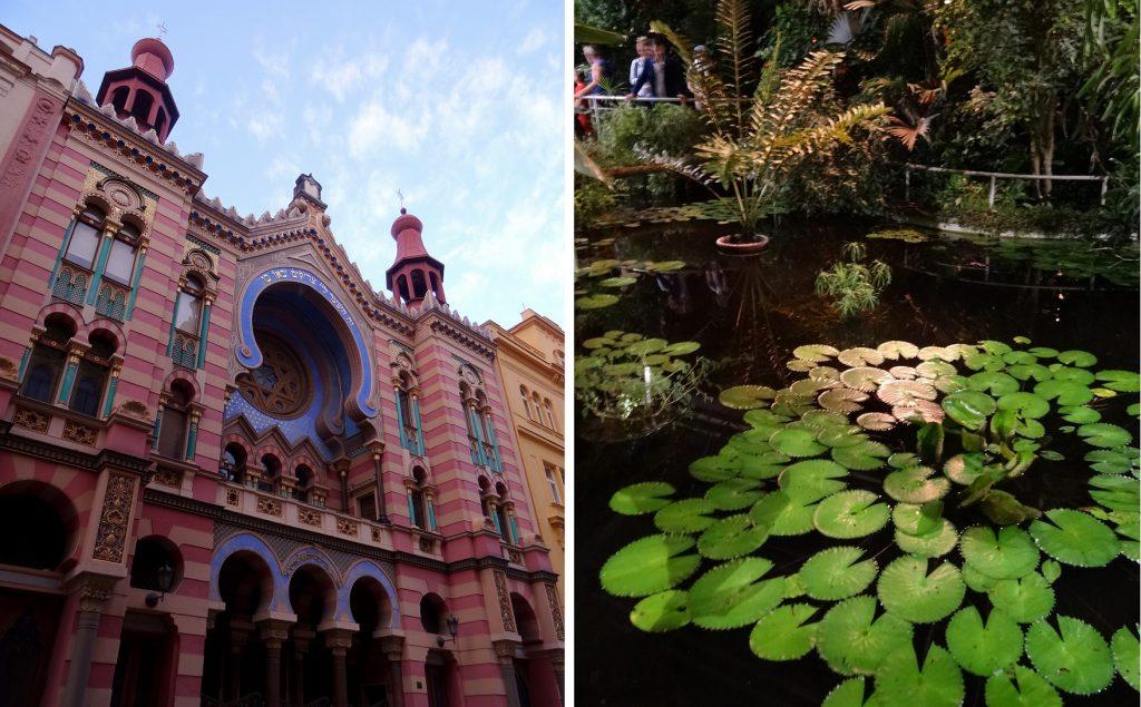 Synagogue du jubilée et jardin botanique dePrague