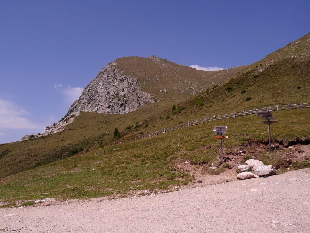 Sentier balisé pour la randonnée non loin de Merano