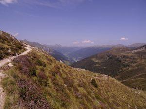 Chemin qui mène à la Kratzberger See (Lago S. Pancrazio) dans le Sud du Tyrol en Italie