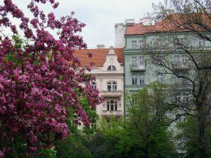 Façcades colorées de Prague
