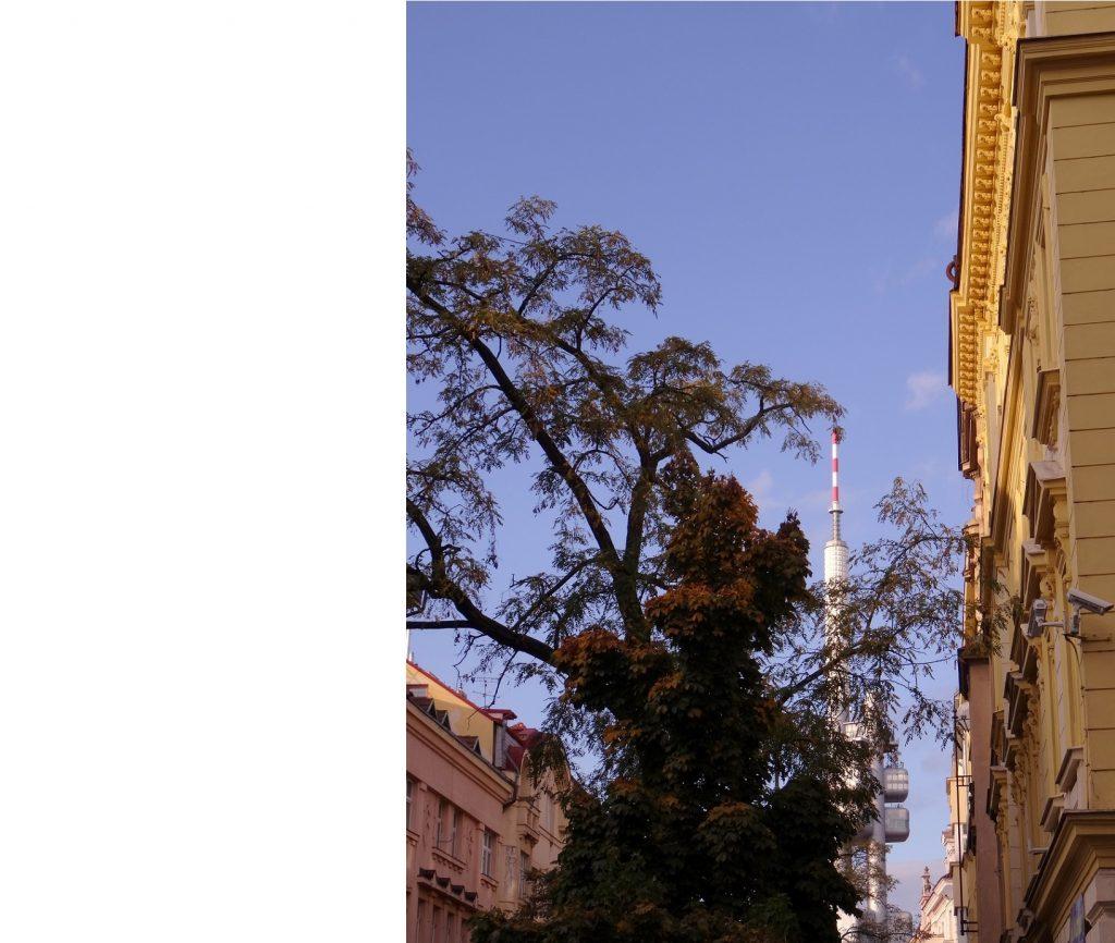 Vue sur la tour télé à Prague