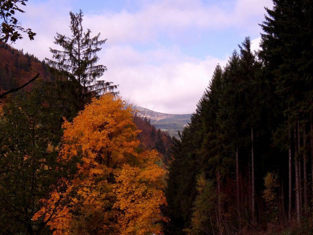 Les montagnes de Spindleruv Mlyn