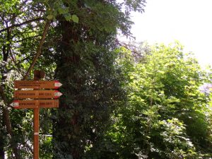 Chemin balisé de Kastelruth - Castelrotto