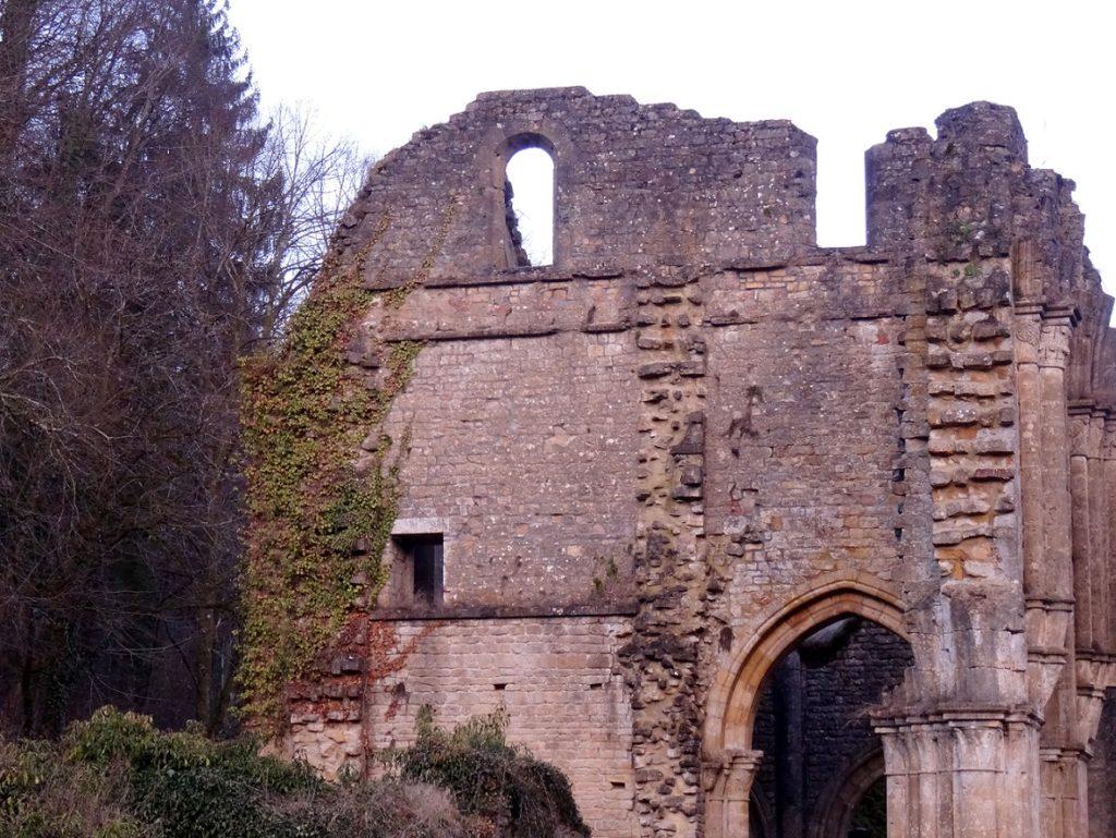 Visite des ruines de l'abbaye d'Orval
