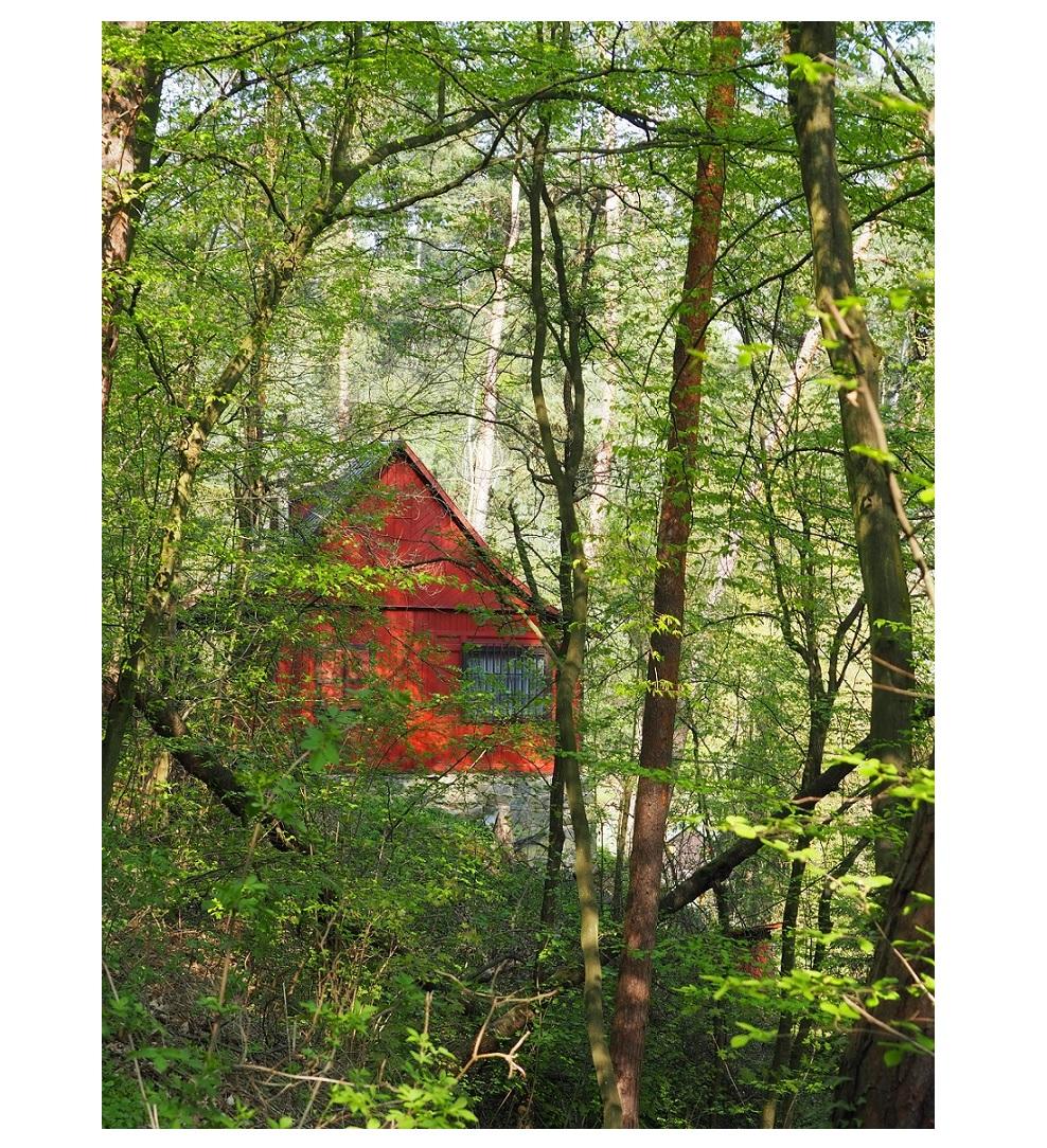 Chalet perdu dans la forêt entre Kamenný Přívoz et Davle