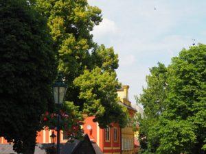 Centre historique de Kutná Hora