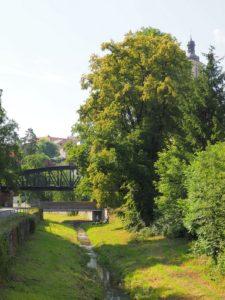 Kutná Hora, escapade d'une journée depuis Prague