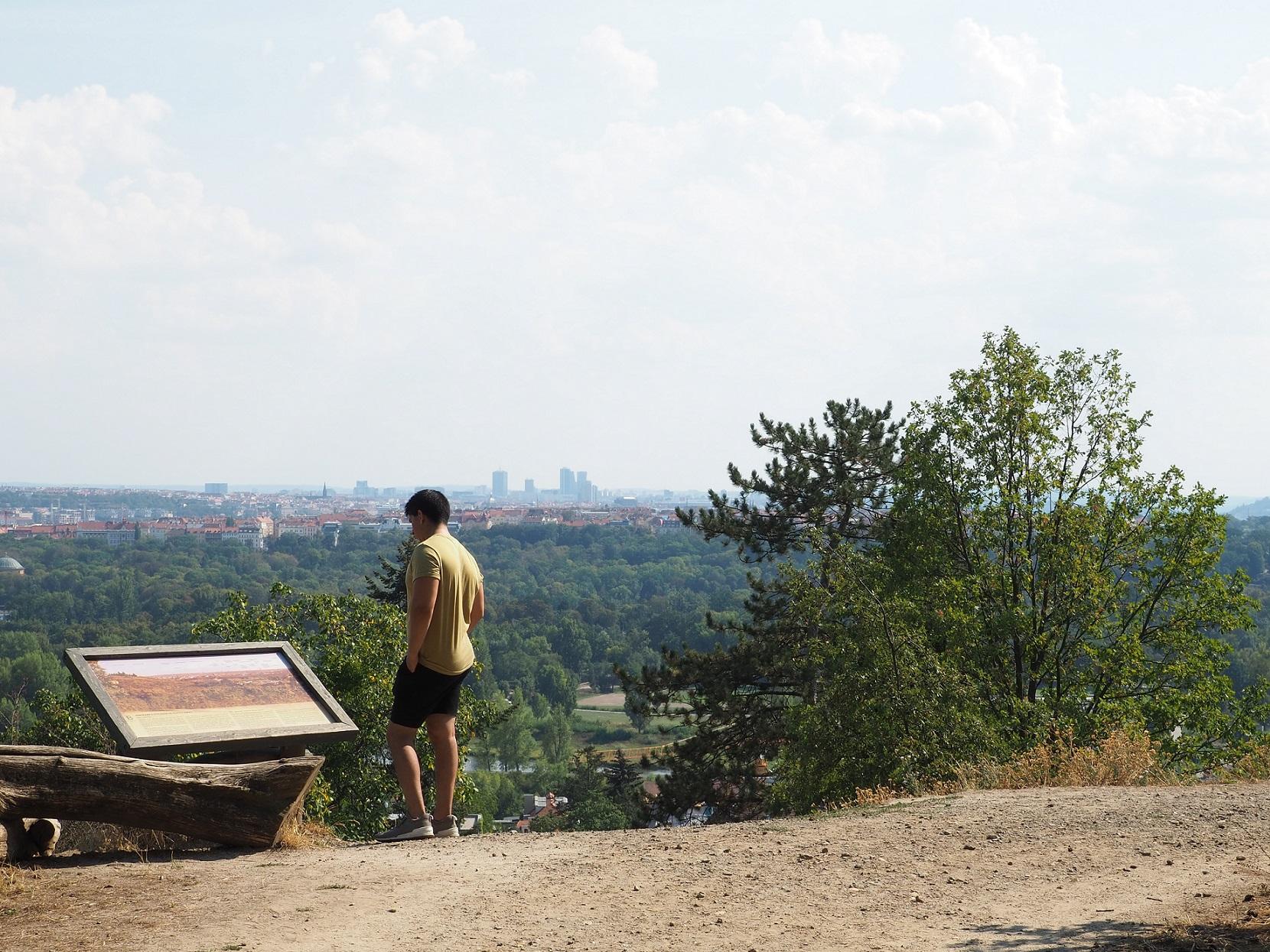 Vue sur Prague depuis le jardin botanique