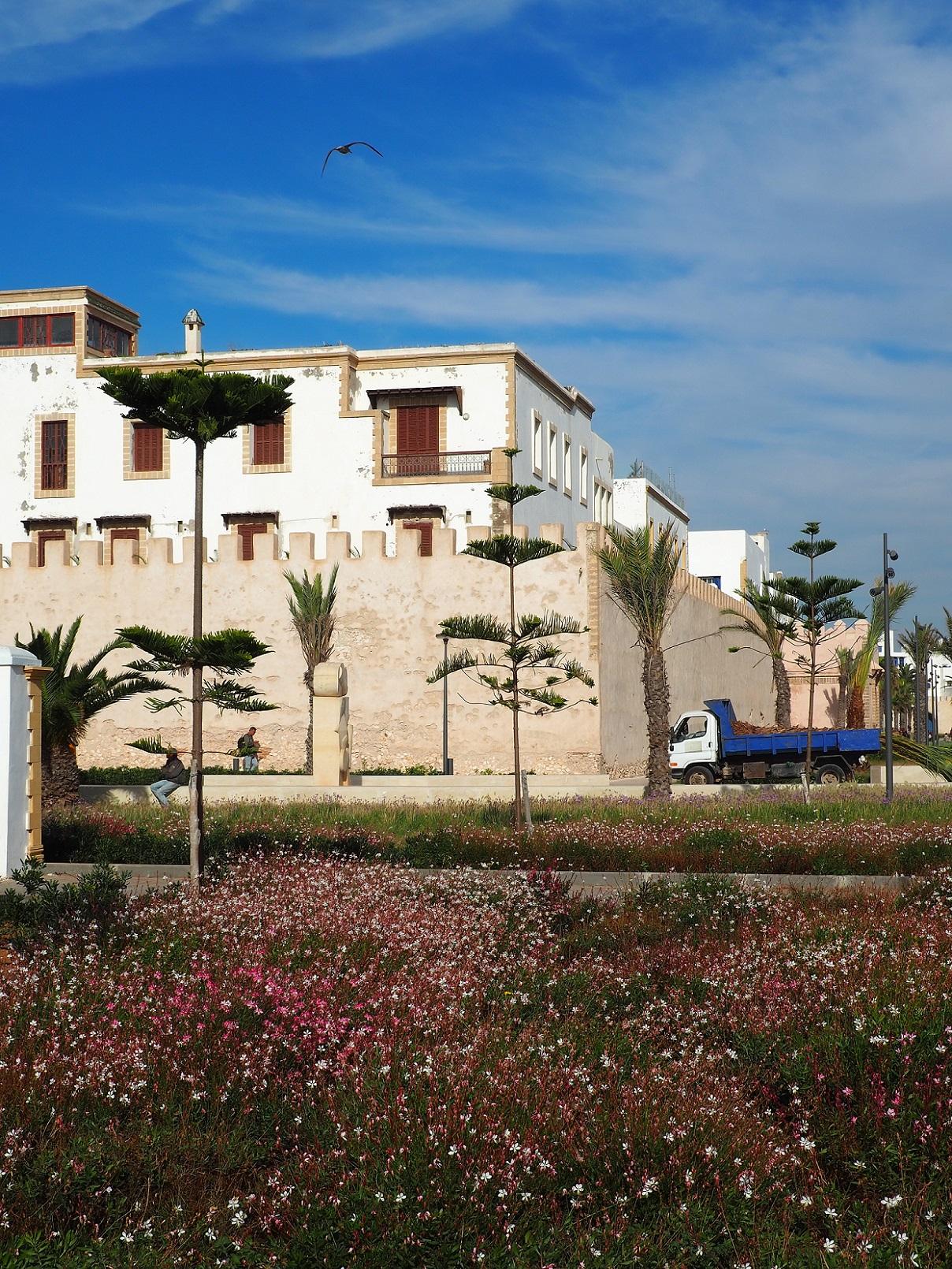 En dehors des remparts d'Essaouira
