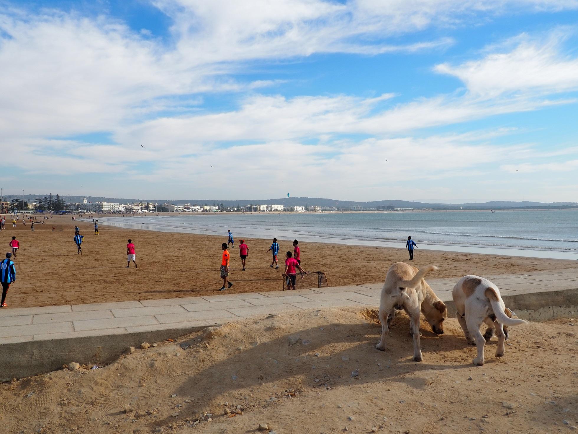 Essaouira et sa plage