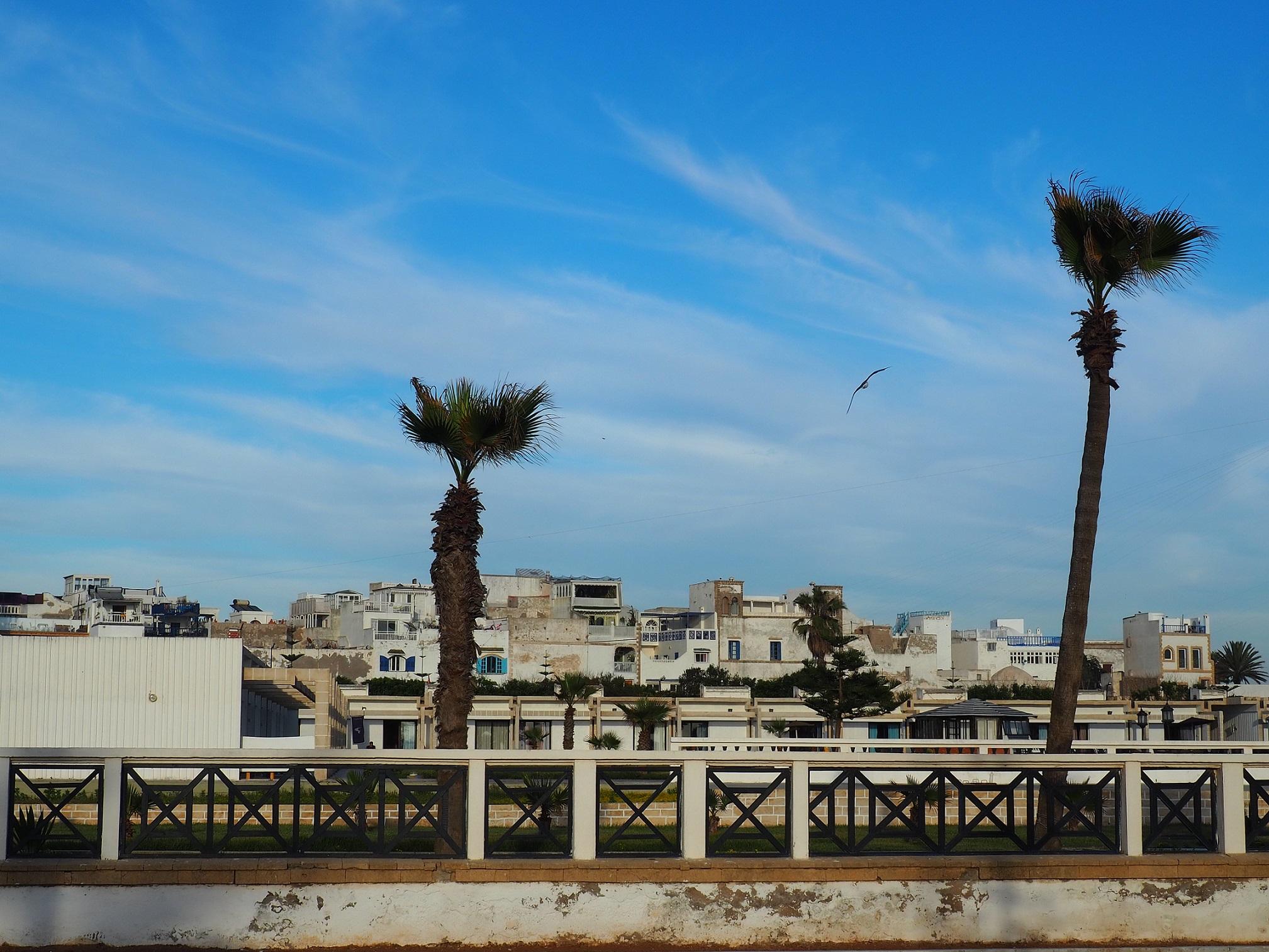 Vue sur Essaouira depuis la plage