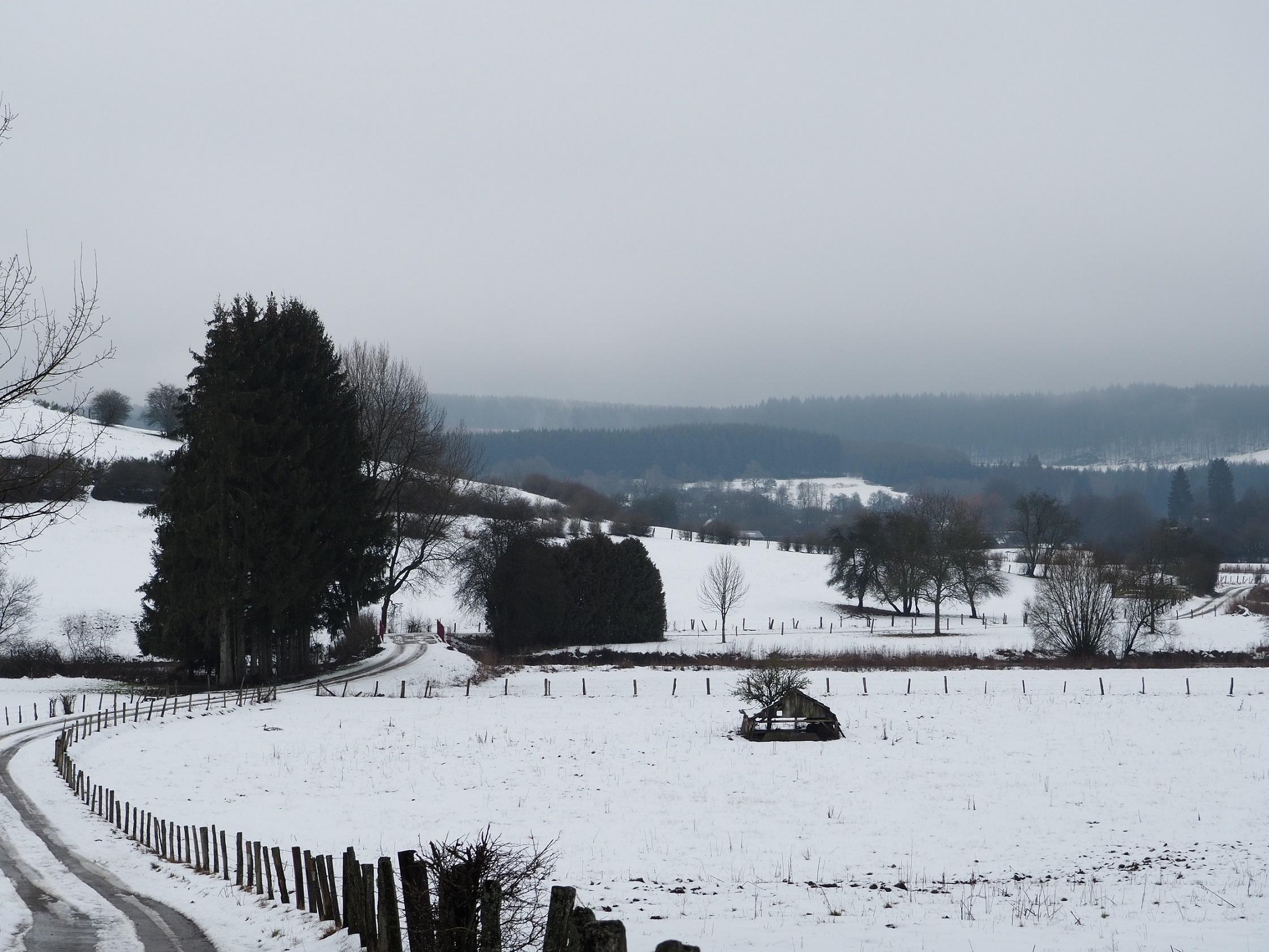 Neige en Ardenne Belge