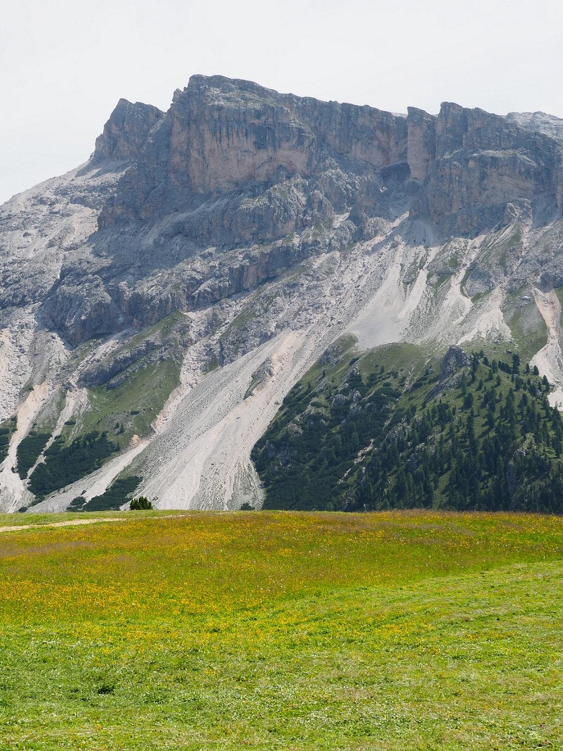 Col Raiser dans les Dolomites
