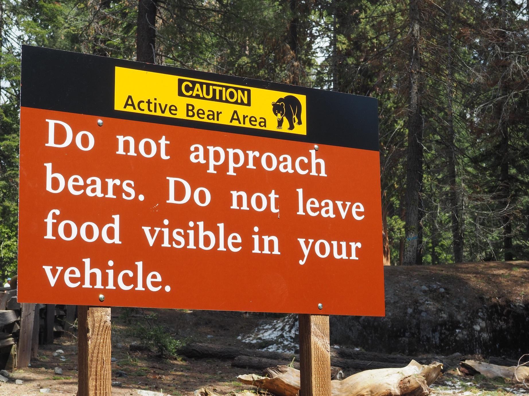 Visite de Sequoia National Park, les informations pratiques