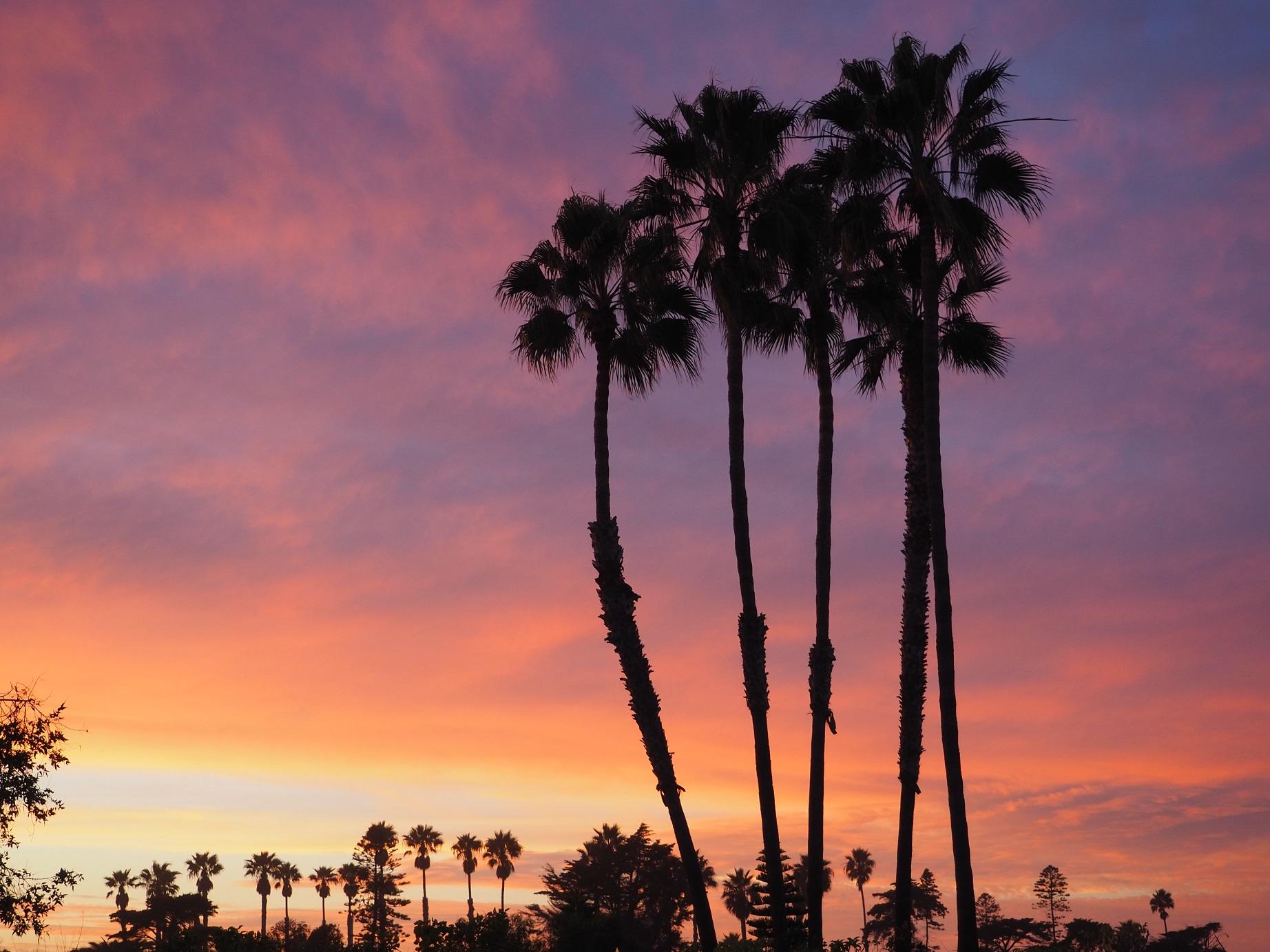 Coucher de soleil rose en Californie