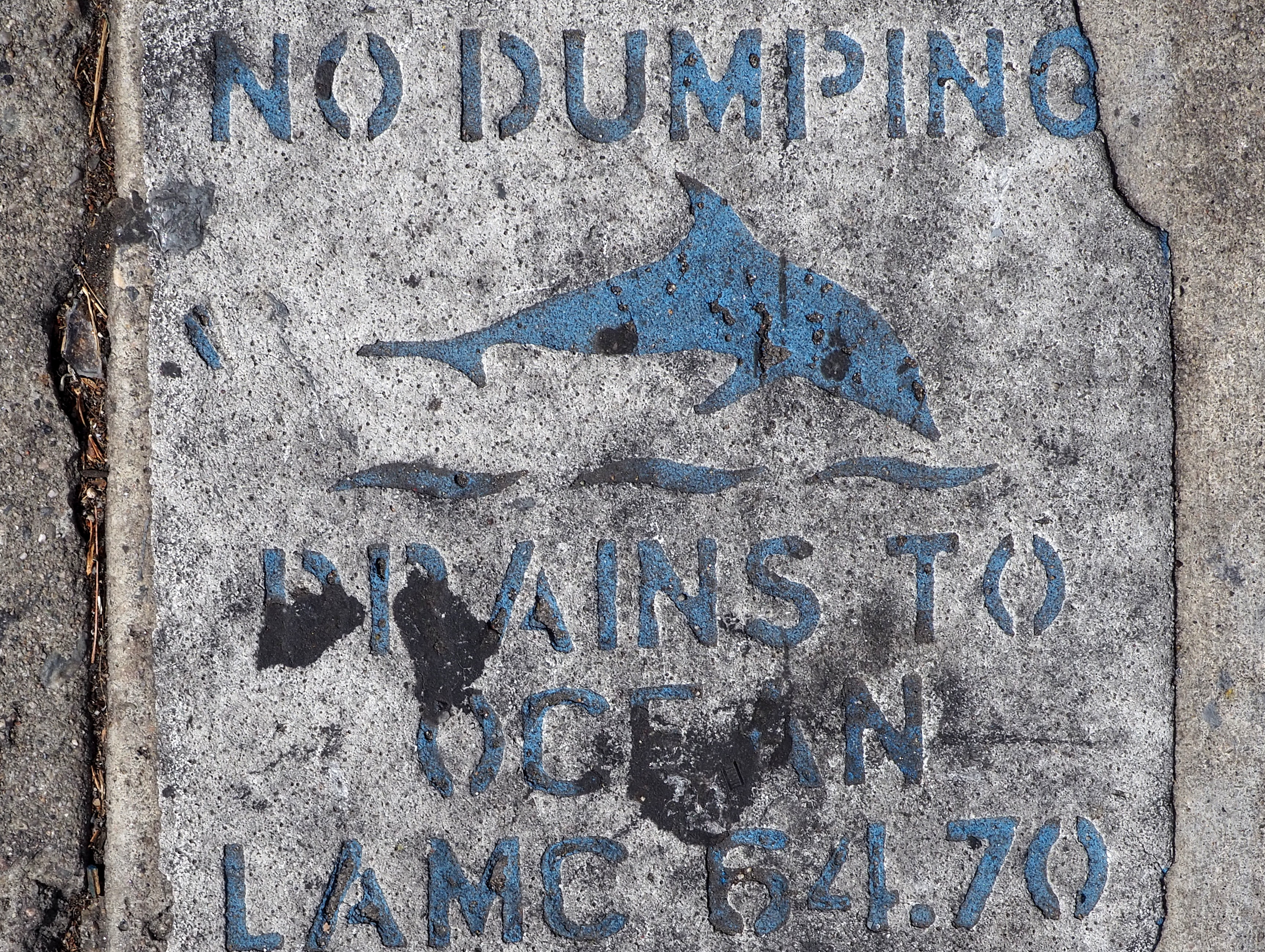 No dumping, drains to Ocean.