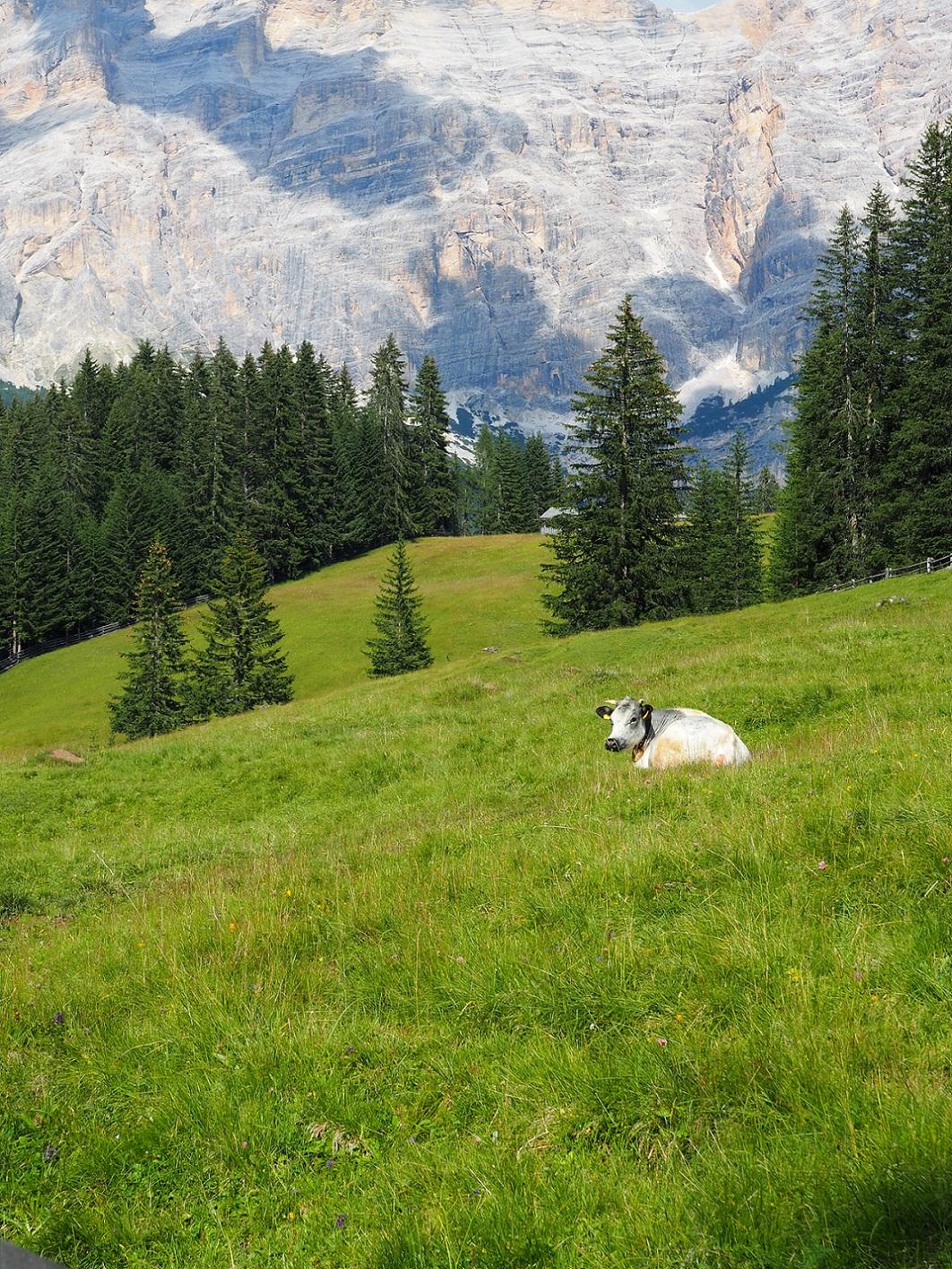 Découvrez 3 idées de randonnées dans les Dolomites, depuis Corvara in Badia et Colfosco