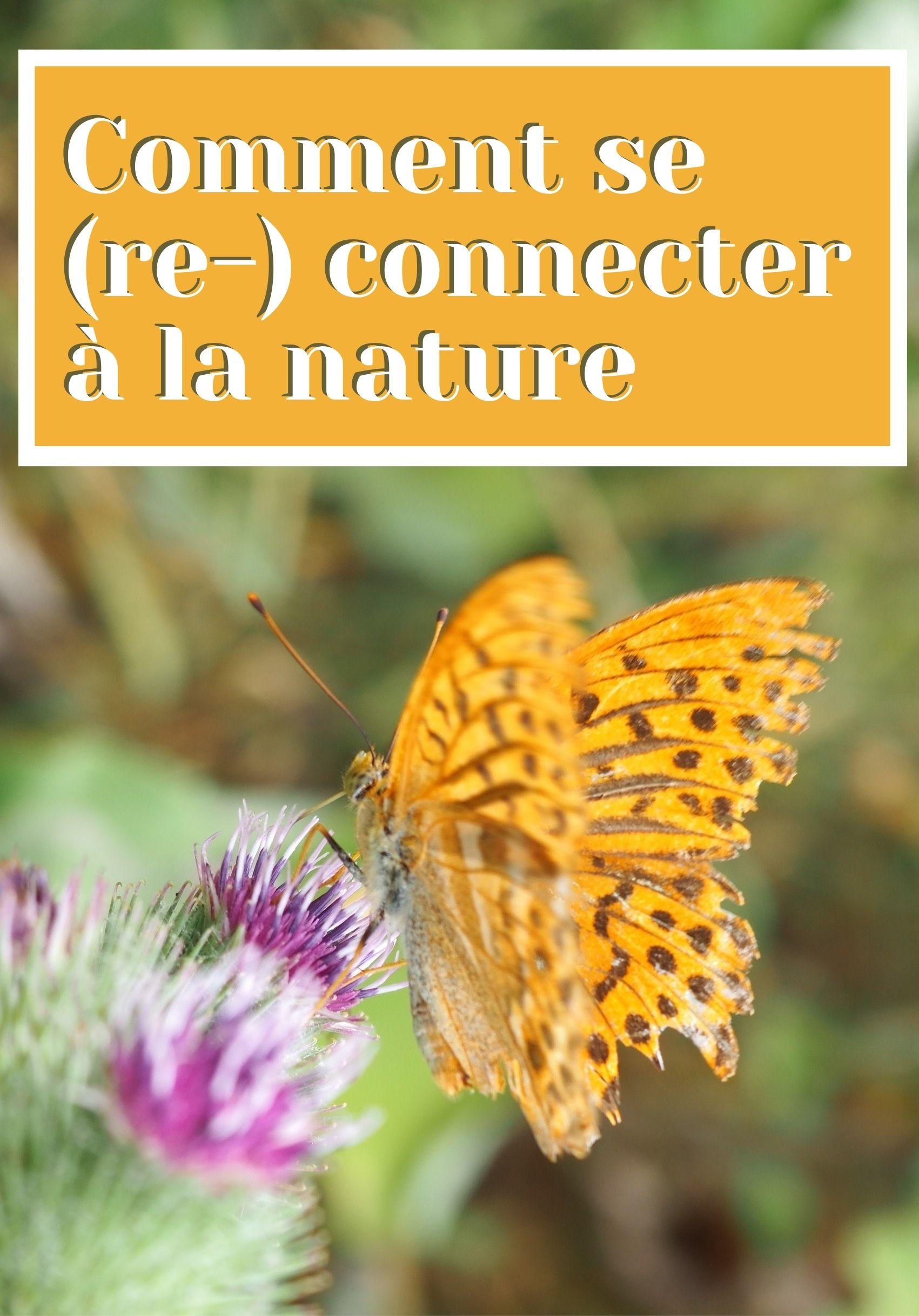 Comment se connecter à la nature au quotidien en 10 idées (et plus): balade, jardinage, bricolage, nourriture et plus encore.
