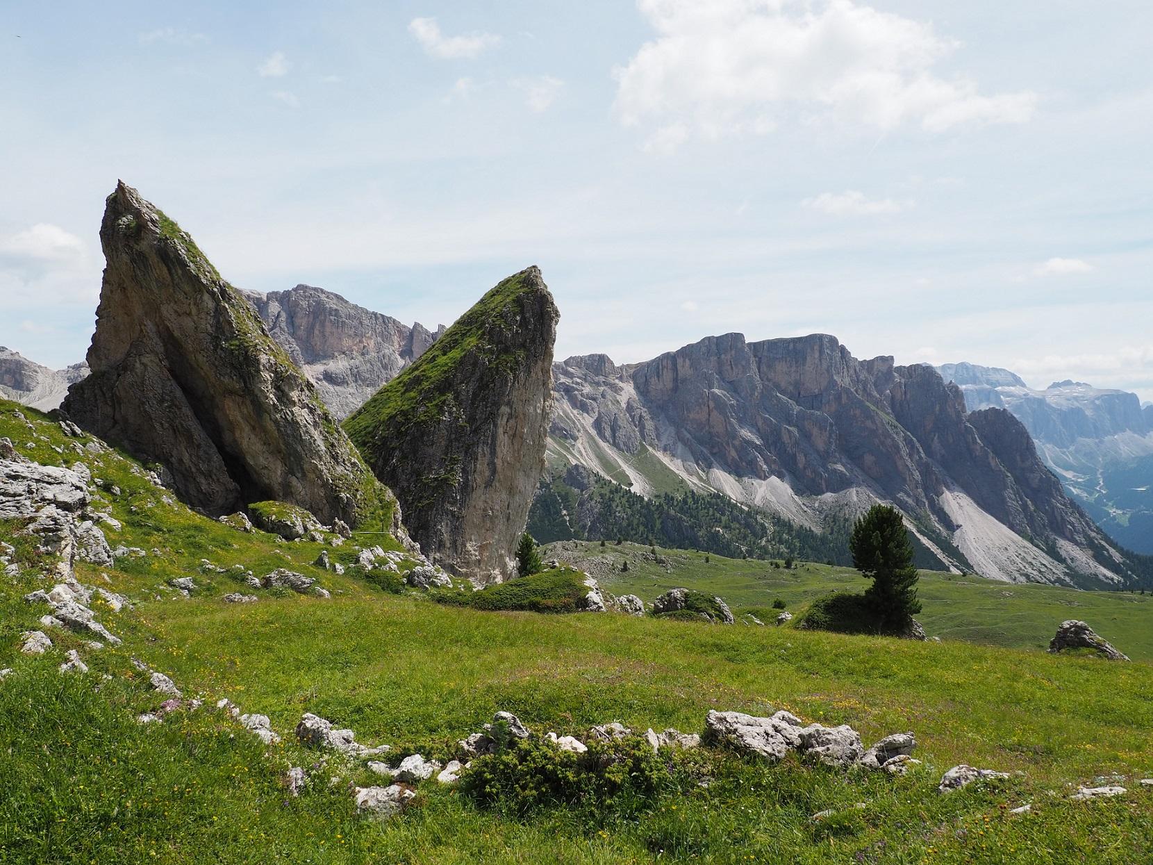 Pieralongia non loin de Seceda dans les Dolomites