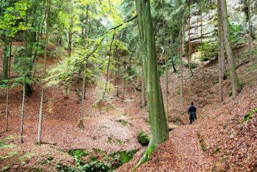 Randonnée à Kokorin en République Tchèque