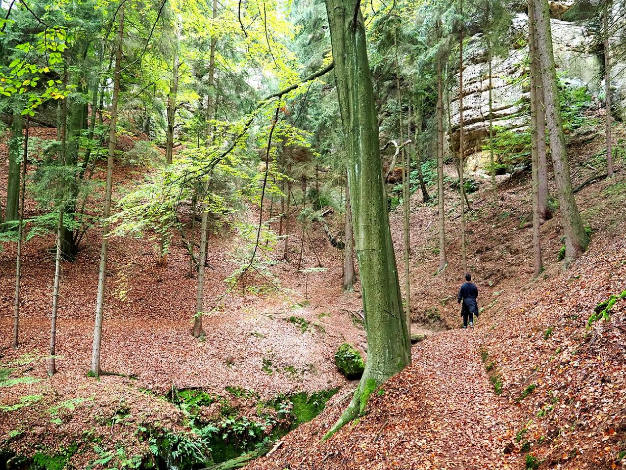 15 randonnées à Prague et en République Tchèque